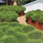 Menai-Sand-Soil-500x500-140319-Image-6.jpg